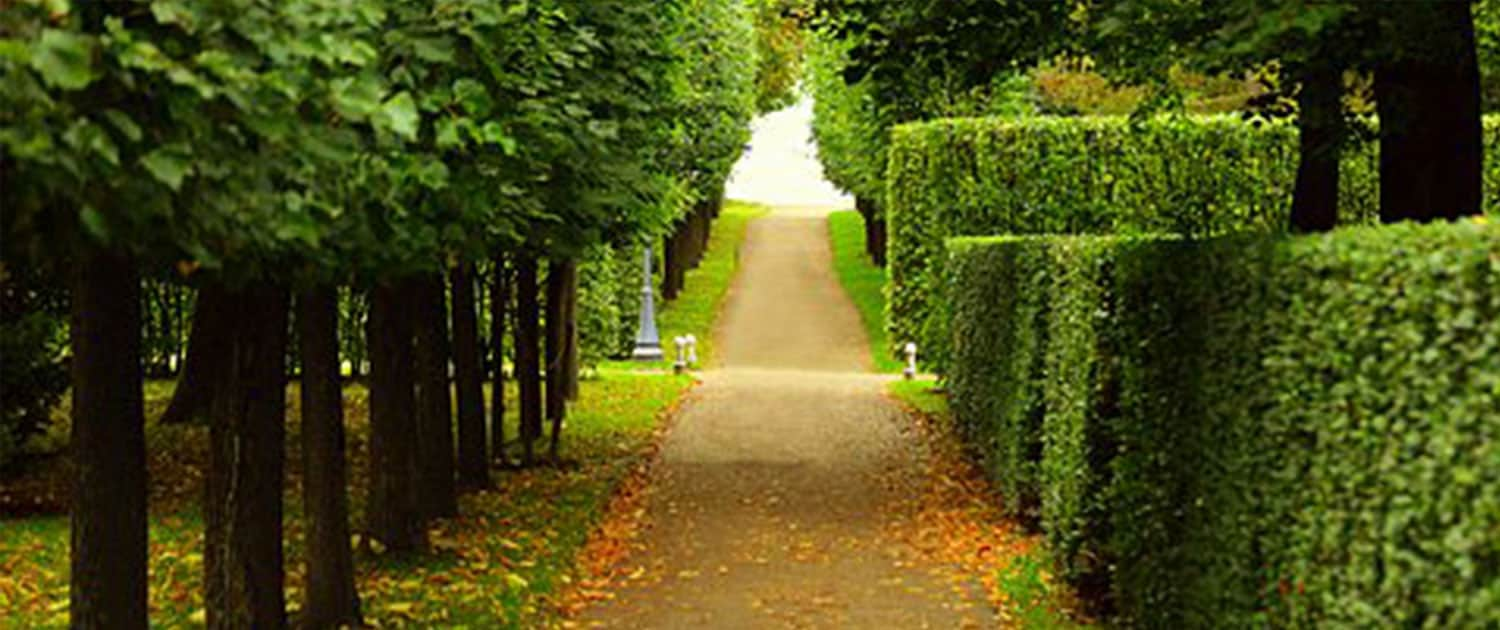 grounds maintenance R lugg landscaping and gardening services grounds maintenance